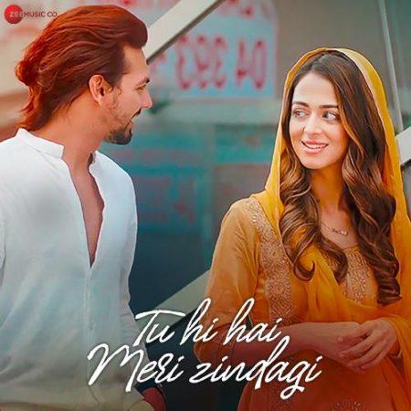 دانلود آهنگ هندی Nikhil D Souza به نام Tu Hi Hai Meri Zindagi + متن آهنگ