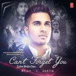دانلود آهنگ هندی آرجون به نام Cant Forget You + متن آهنگ