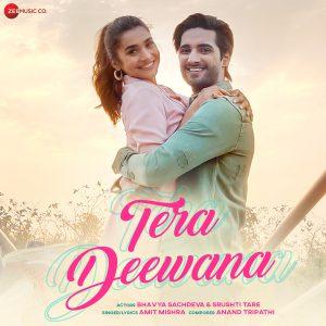 دانلود آهنگ هندی آمیت میشرا به نام Tera Deewana + متن آهنگ