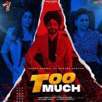 دانلود آهنگ هندی Gurlez Akhtar به نام Too Much + متن آهنگ