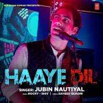 دانلود آهنگ هندی جوبین نوتیال به نام Haaye Dil + متن آهنگ